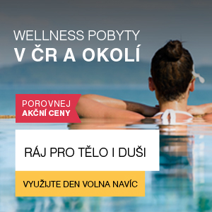wellness_cr_2016