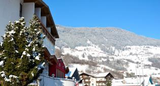 Hotel Hotel Alpina