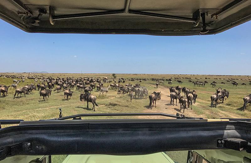 Národní Park Masai Mara (4dny) a pobyt u moře
