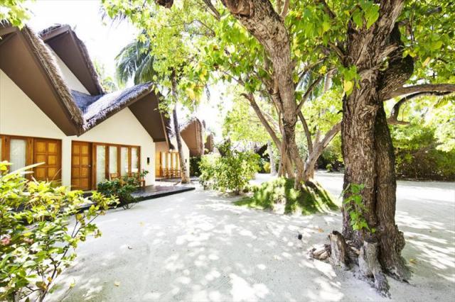 Hudhuranfushi Resort ****, Maledivy-severní malé Atol