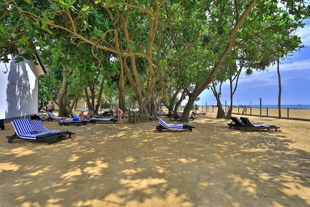 Hibiscus Beach