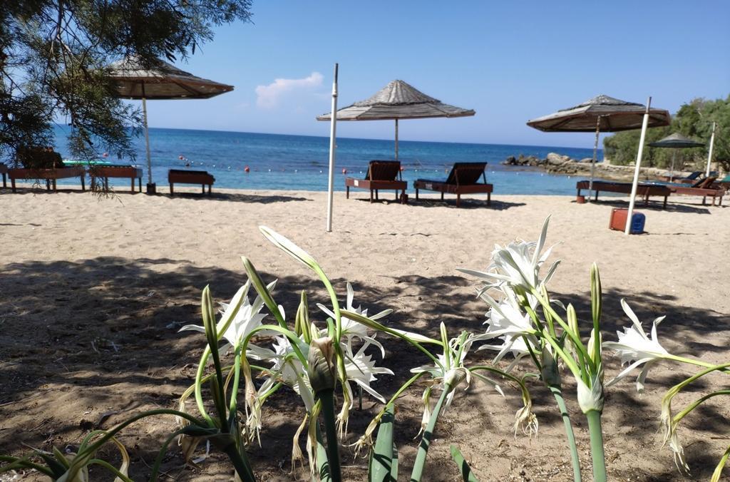 Riviera Beach Bungalows