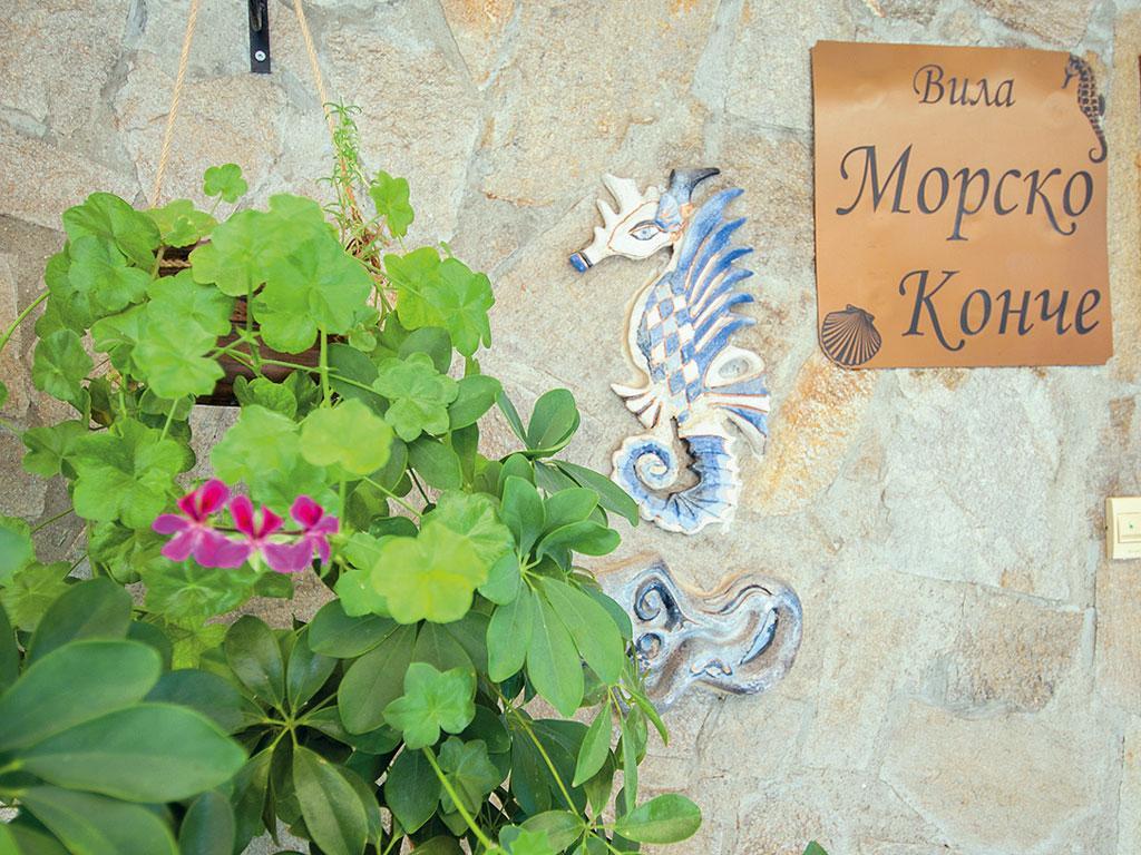 Morsko Konche