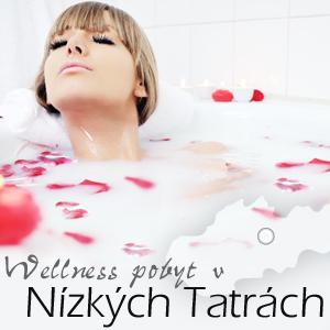 Wellness - Tatry