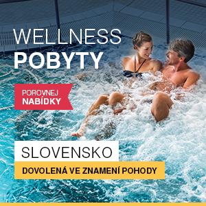 wellness-slovensko-2016