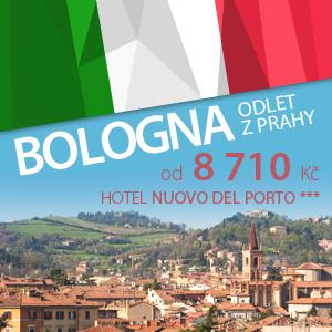 D_bologna_300x300_1